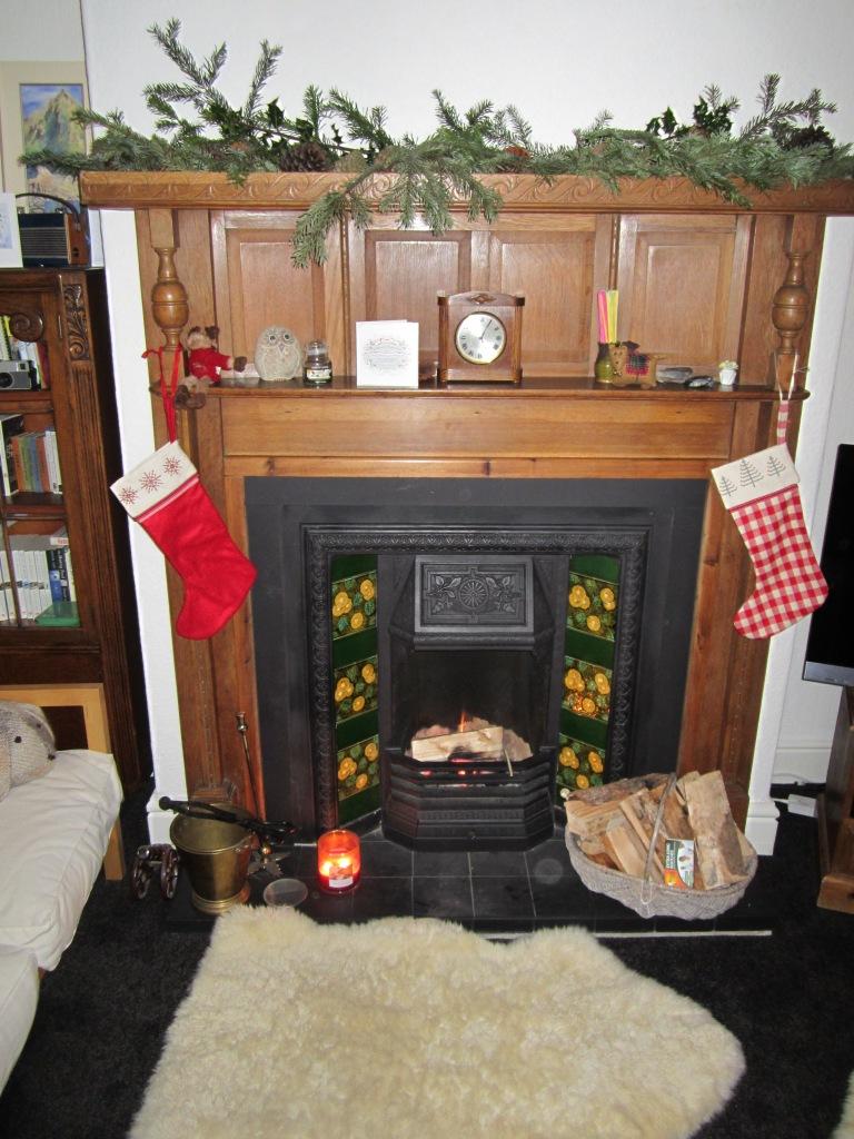 Christmas 2012 056